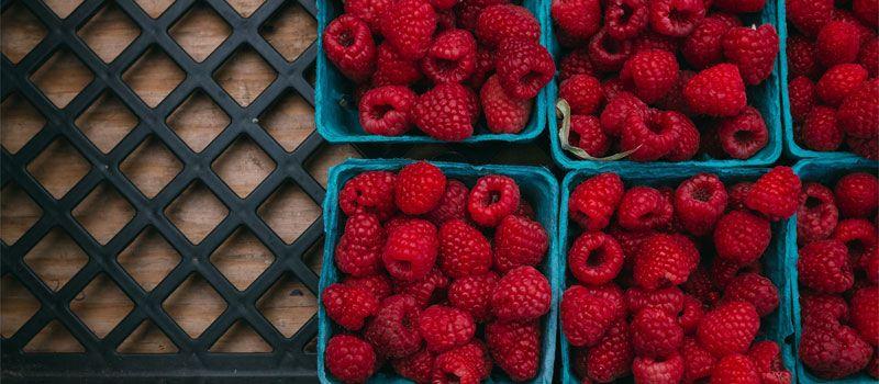 raspberries-in-basket